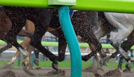 【JBC2019の予想】浦和開催の今年はひたすら逃げ馬を狙う!!